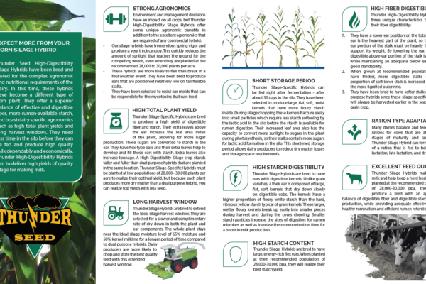 Thunder-HD-Silage-Brochure1